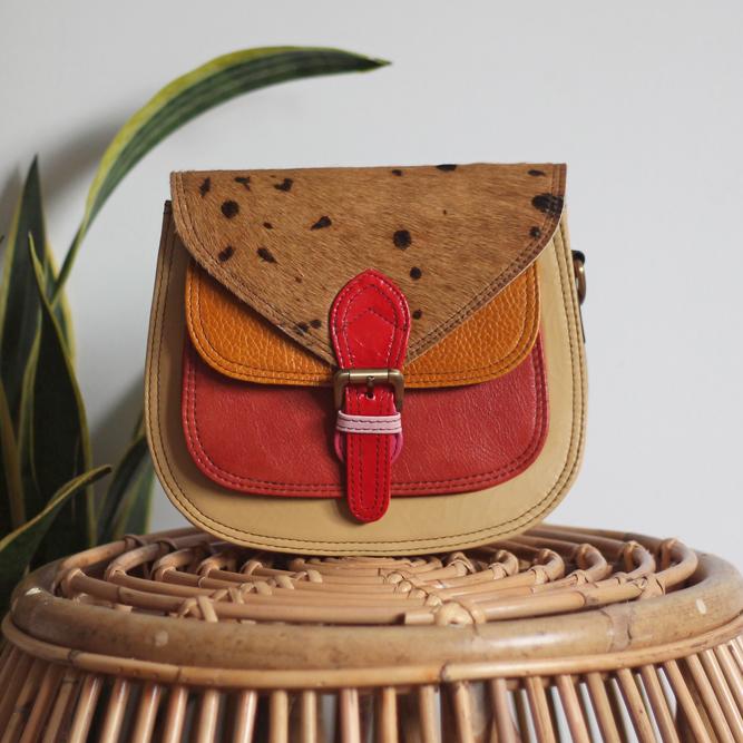 Multicolor Balu Bag